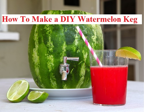 How To Make A DIY Watermelon Keg-s