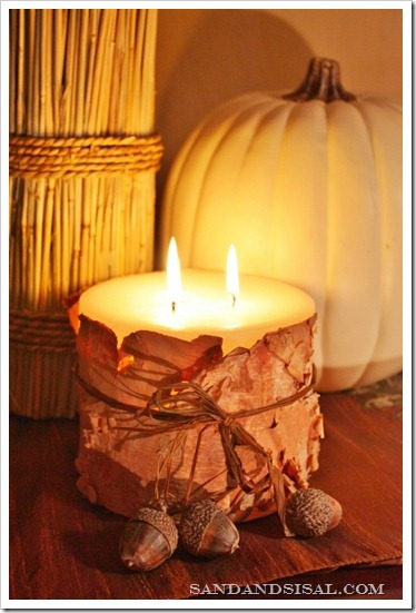 DIY Projects: Birch Bark Candles