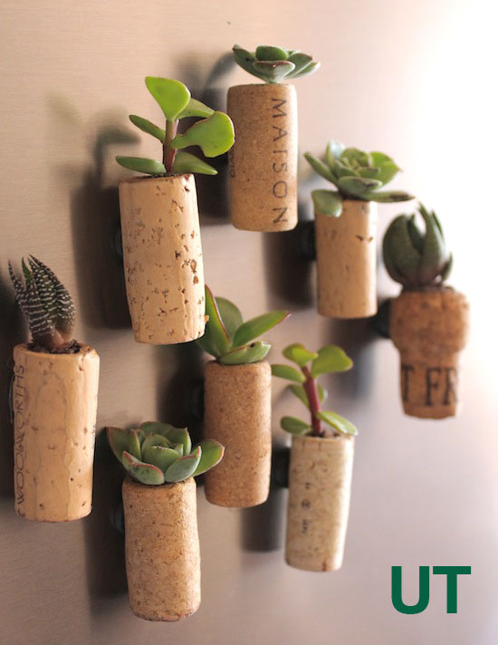Cork Planter Magnets For The Fridge
