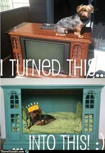 Old Fashion TV Console Into Doggy Bed