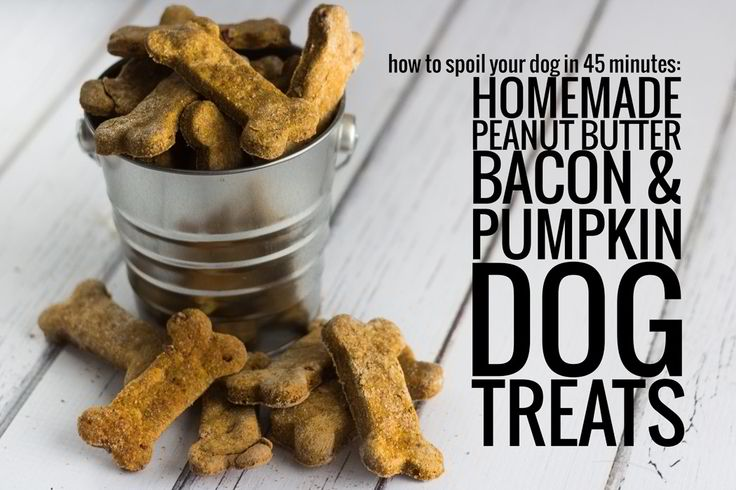 Pumpkin and Bacon Doggy Treats