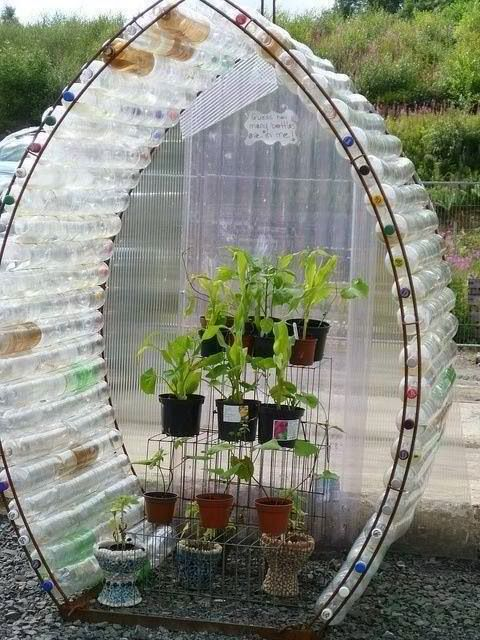 Upcycle Greenhouse Recycle Bottles