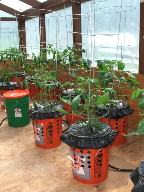 The Alaska Grow Bucket System