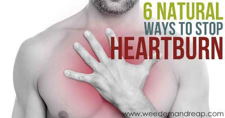How To Heal Heartburn Naturally