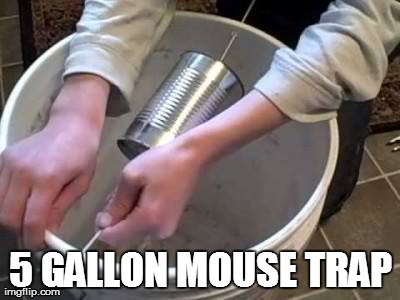 5 Gallon Mouse Trap