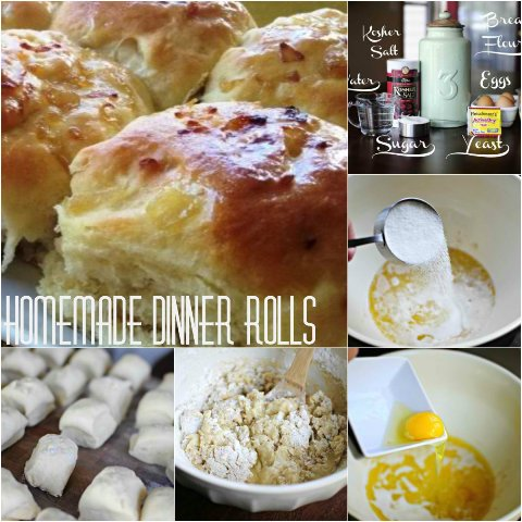 Homemade Dinner Rolls