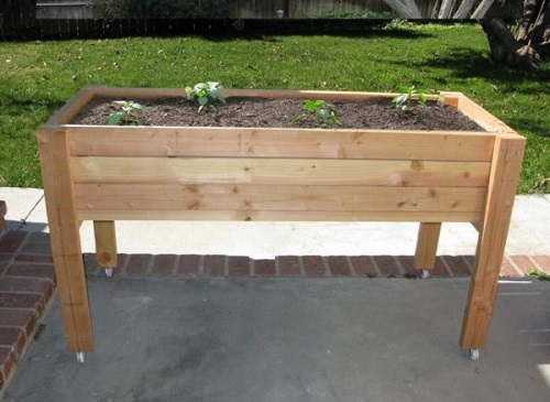 The Elevated Planter Box
