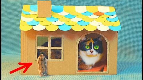 DIY Cardboard House for Cat